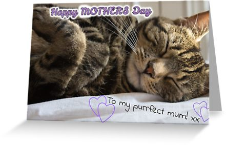Purrfect Mum Mother's Day card
