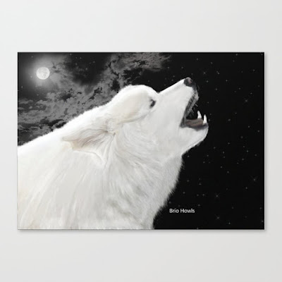 brio-howls-this-night-canvas