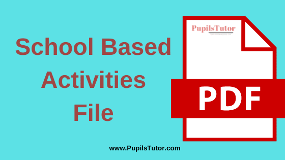 School Based Activities and School Internship Report B.Ed Practical File, Project and Assignment in English Language for 1st and 2nd Year / All Semester Free Download PDF | School Based Activities File for B.Ed | School Based Activities Assignment in English Medium | School Based Activities Project Report