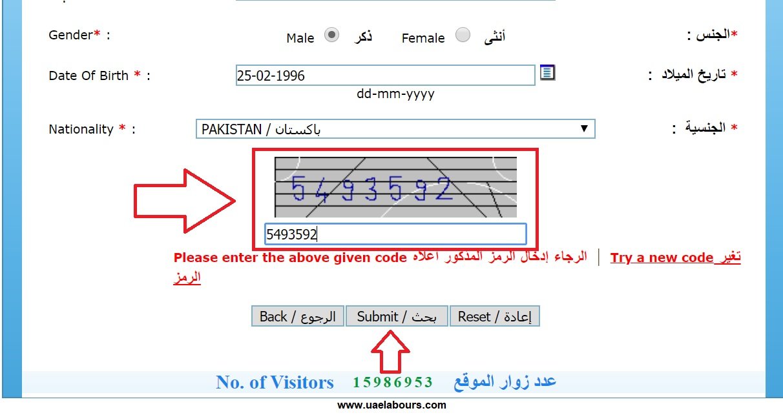 check visit visa status uae