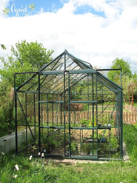 Szklarnia do ogrodu - wybór i montaż
