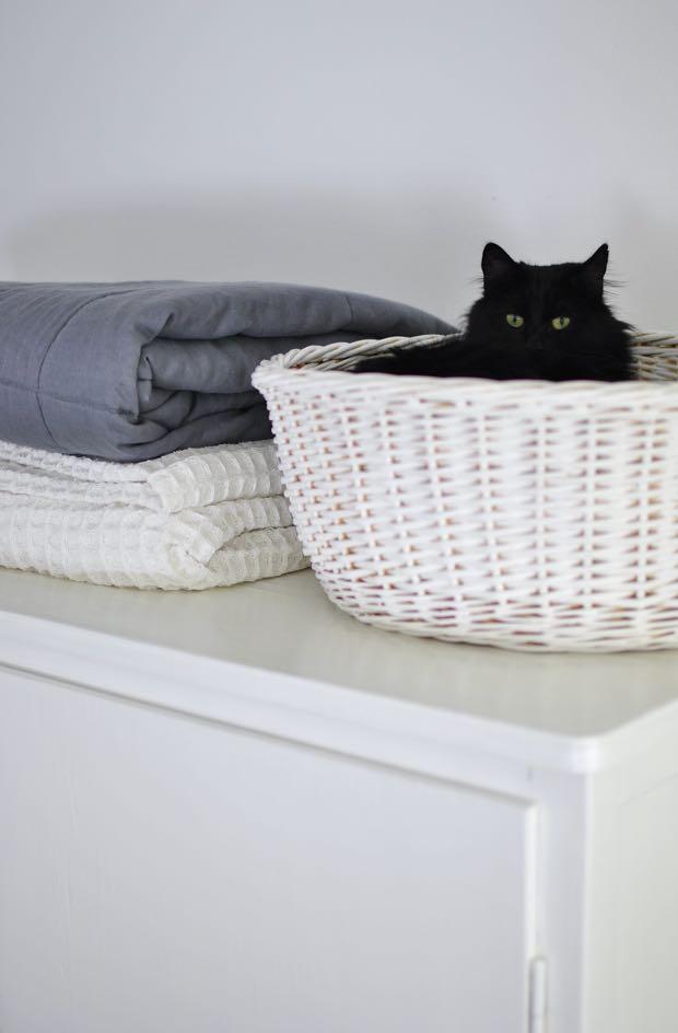 hannashantverk.blogspot.se kattkorg katt