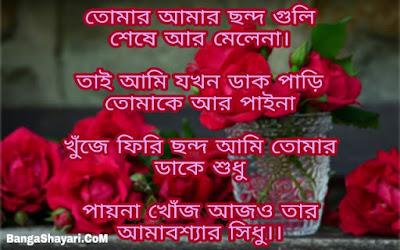 Bangla Sayari