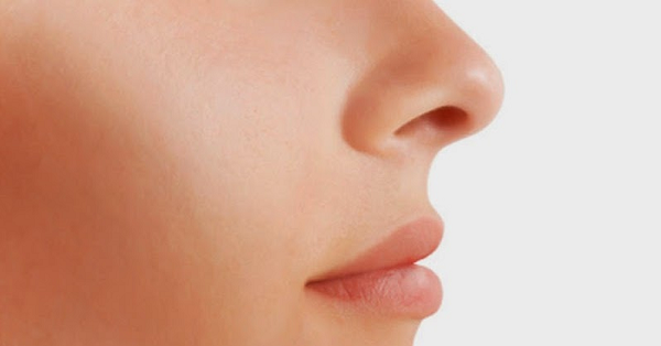 keunikan dua lubang hidung dan fungsinya