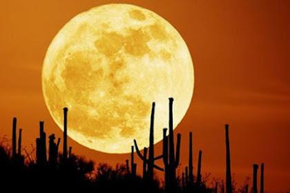 Keistimewaan Malam Nisfu Sya'ban, Amalan, Faedah dan Dalil Tentang Malam Nisfu Sya'ban