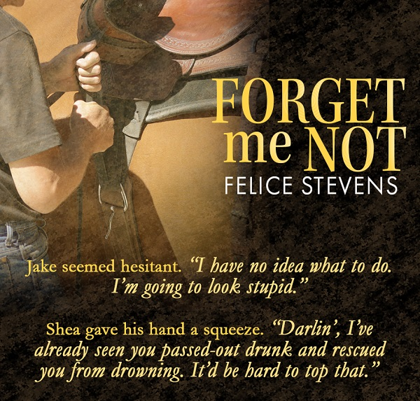 """Jake seemed hesitant. """"I have no idea what to do. I'm going to look stupid."""" Shea gave his hand a squeeze. """"Darlin', I've already seen you passed-out drunk and rescued you from drowning. It'd be hard to top that."""""""