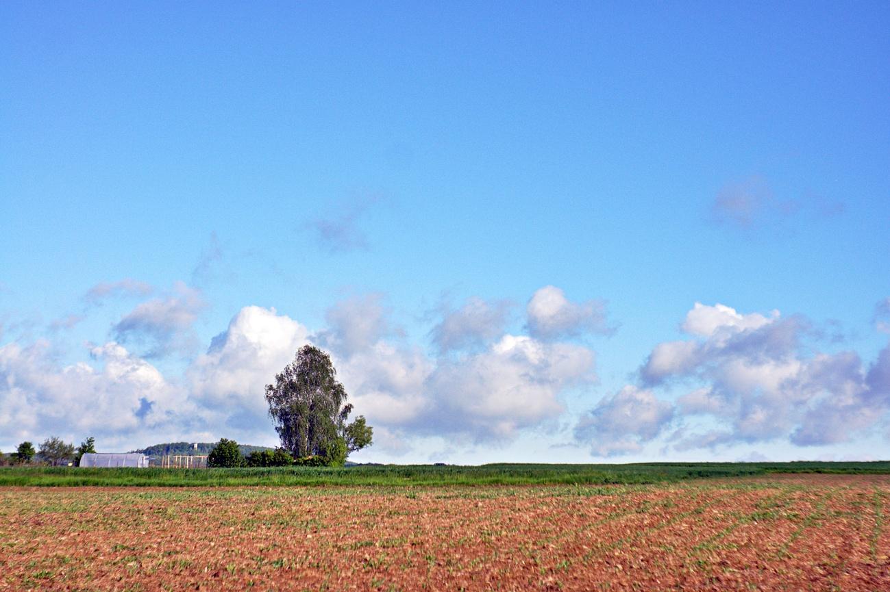 48€ Kombo — Bild des Tages #91 — Blauer Himmel