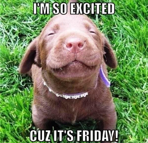 Cute Friday Memes