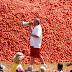 Lễ hội cà chua Tomatia của Tây Ban Nha có gì đặc biệt?
