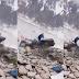 Alpinista esquiva enorme roca y se salva por poco de morir aplastado (video)