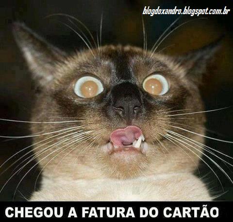 fatura.png (480×456)