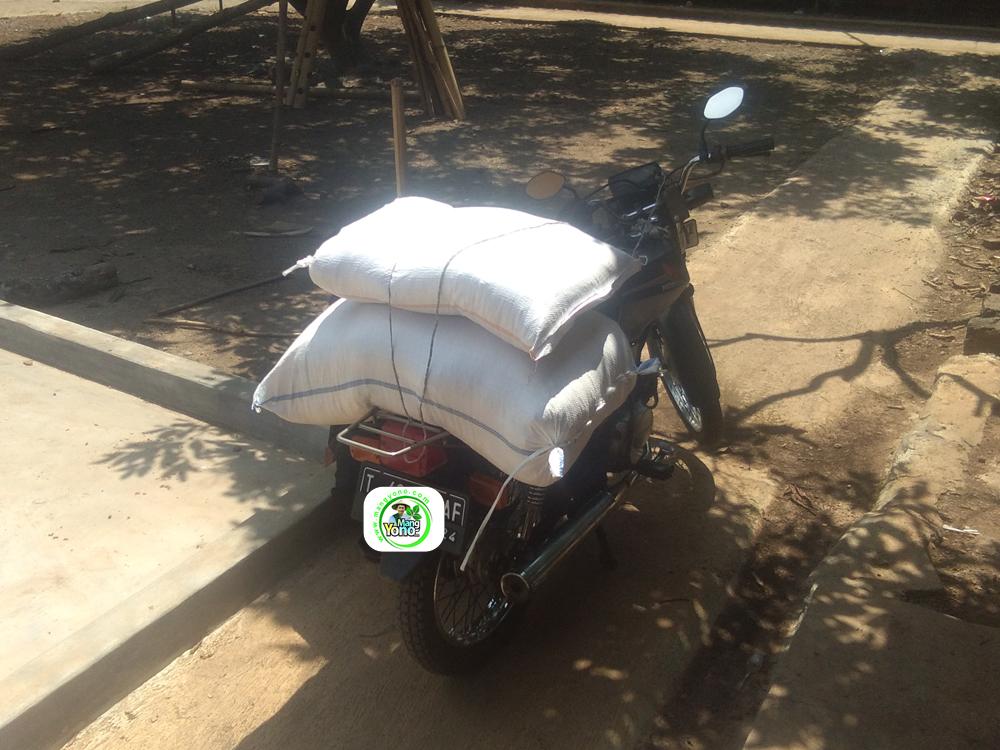 Benih Padi yang dibeli   MANFAAT TANI Subang, Jabar.   (Setelah packing karung).