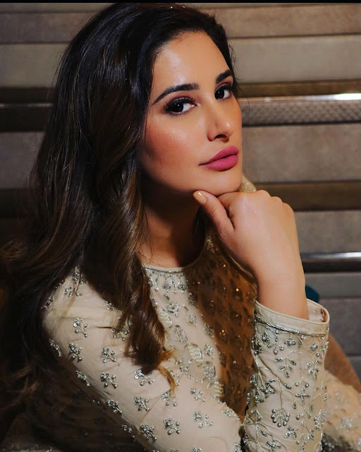 Nargis Fakhri (Indian Actress) Wiki, Age, Height, Family, Career, Awards and Many More
