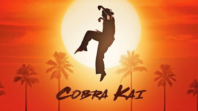 Top Best 15 Cobra Kai Jackets, Vest, Bathrobe, and much more for Men's