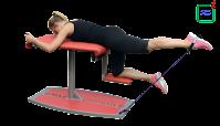 Тренажер сідничних м'язів тренажор