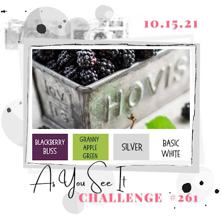 challenge 261