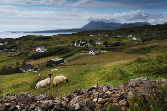Sheep and scattered farm buildings are the typical landscape of the Isle of Skye - Moniedism