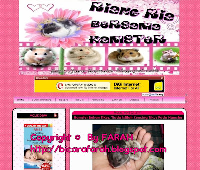 Blog Design 4