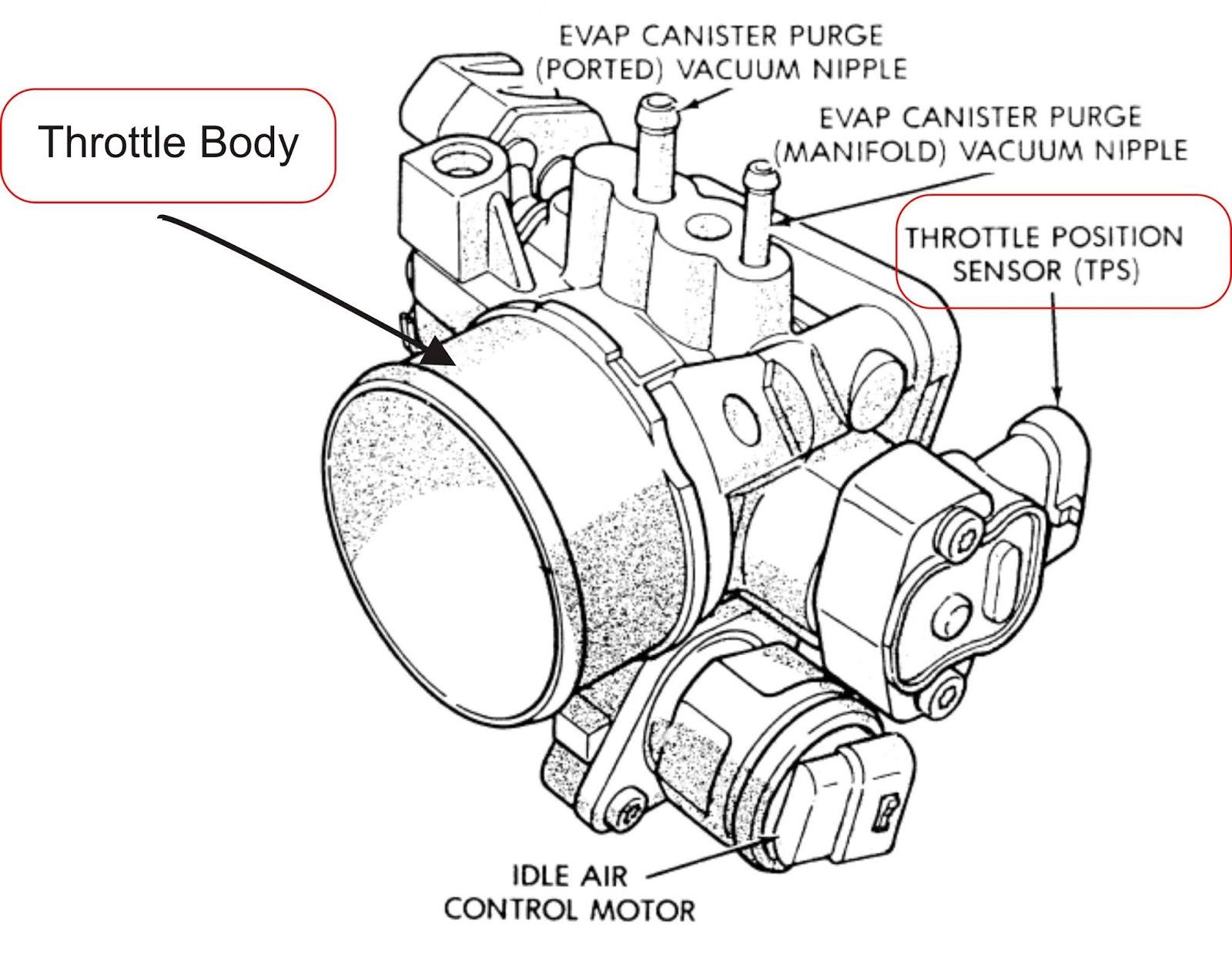 fungsi throtle position sensor tps