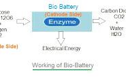 Bio-battery Pdf Report