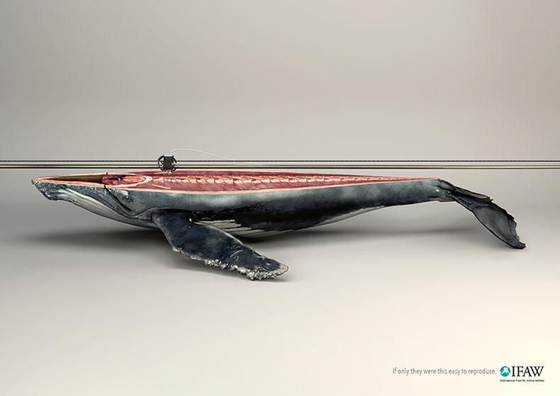 Animales 'Impresos en 3D' ilustra la naturaleza irremplazable de las especies amenazadas