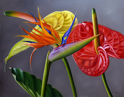 ave de paraiso flor