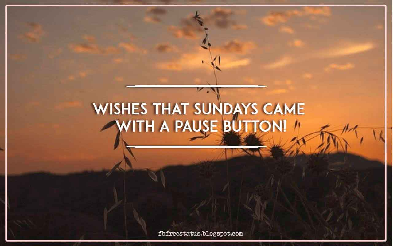 Wishes that Sundays came with a pause button!