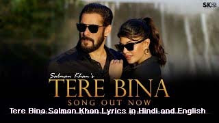 Tere Bina Salman Khan Lyrics in Hindi and English