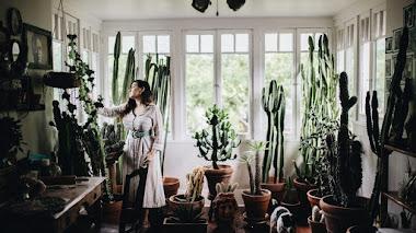 Plant Tribe: 17 ejemplos de cómo vivir felices con plantas (de interior)