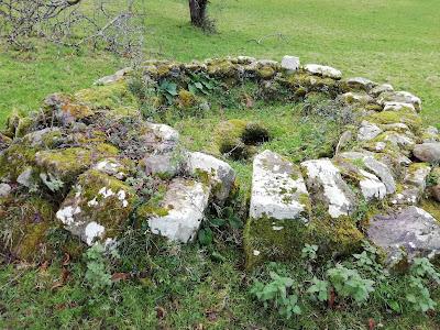 Bullaun Stone.