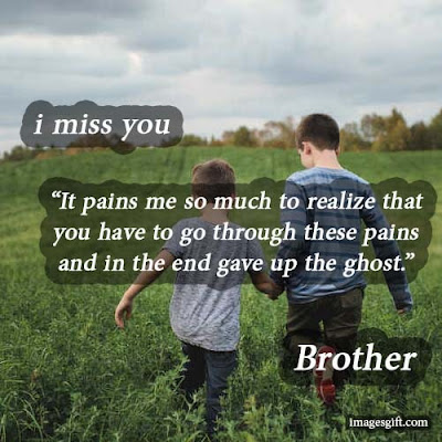 i miss you brother