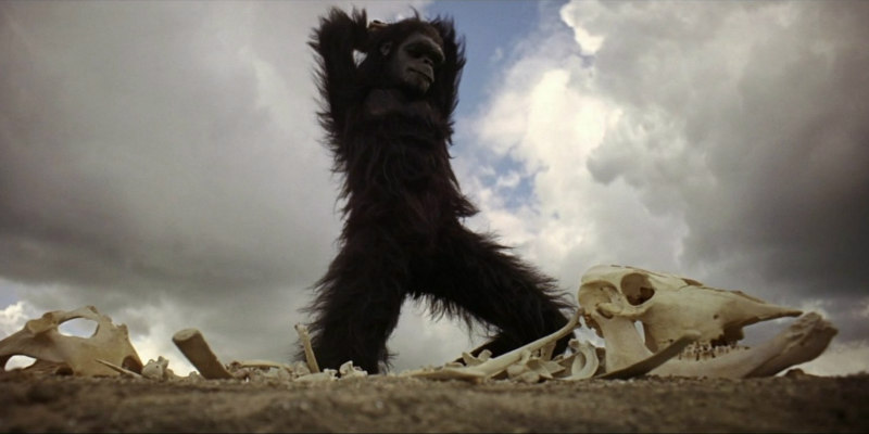 2001: A SPACE ODYSSEY's 'Dawn Of Man' Sequence