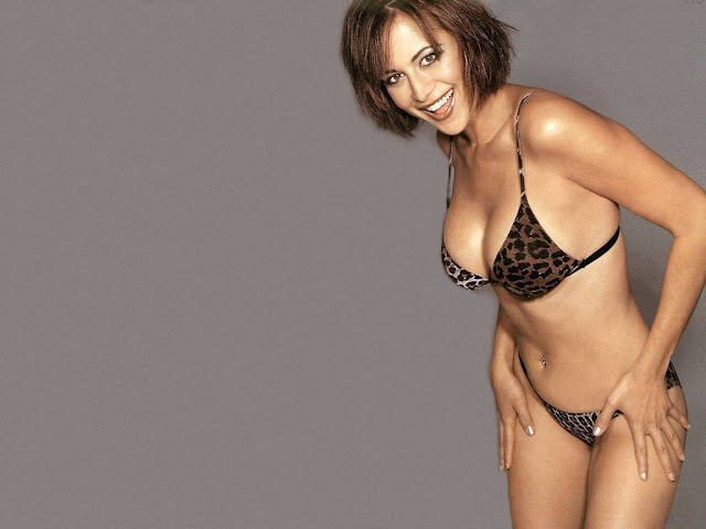 3d Christmas Wallpaper Animated Hot Catherine Bell S Wallpapers World Amazing Wallpapers