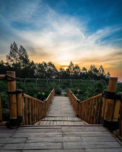 Agrowisata Gunungsari