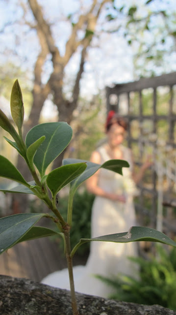 view of bride through the greenery