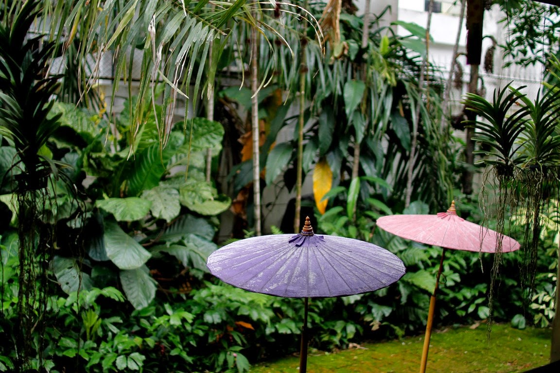 Journal photographique: Museum of Floral Culture - Dok Mai ...
