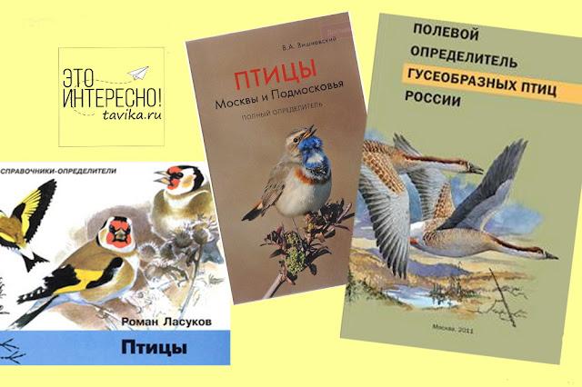 нон-фикшн литература про птиц