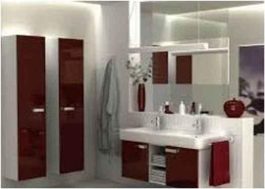 Bathroom Designs Indian Apartments Elegant