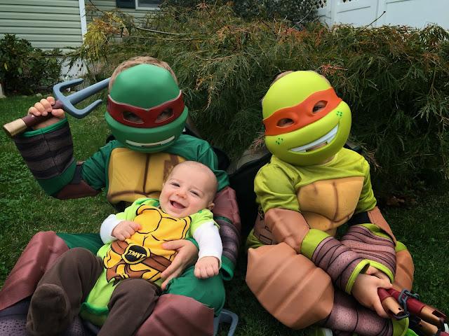 3 ninja turtles