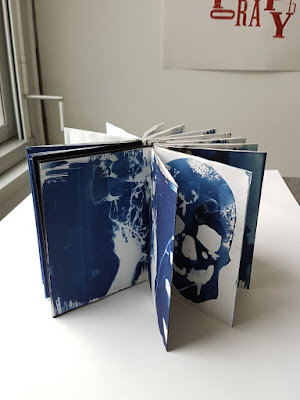 Carmen Wing: Whoopidooings Blog: Cyanotype Accordion Book