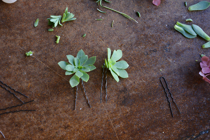 succulent hair pin diy