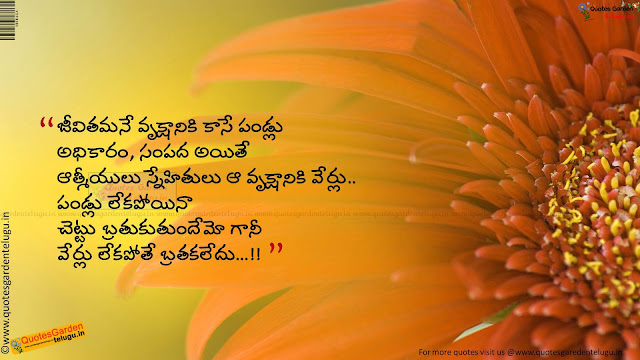 Heart touching friendship quotes in telugu 1049