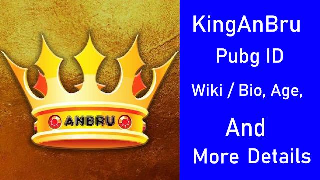 KingAnBru Pubg Wiki