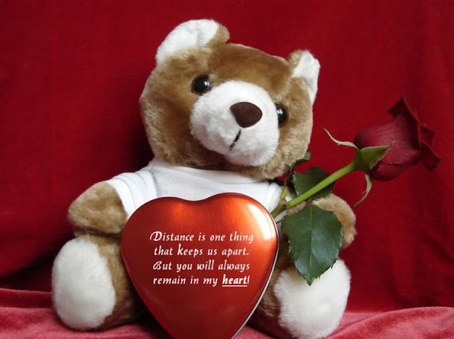 Happy Teddy Day Images SMS in Hindi Wallpaper Teddy Bear Day – Teddy Bear Valentines Day Card