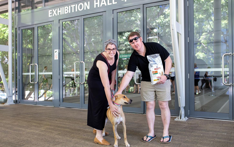 Rspca Queensland Pop Up Adoption 2020 January 18 Australian Dog Lover