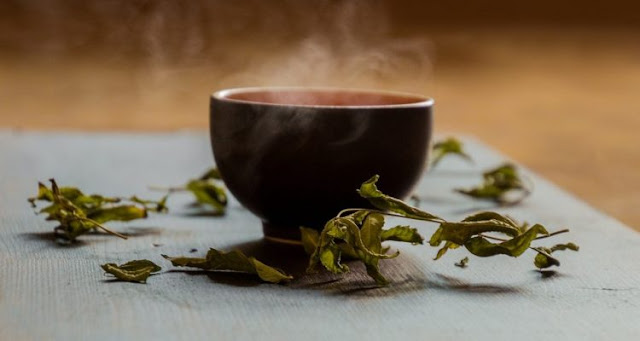 Green tea extract combined with exercise would improve liver health