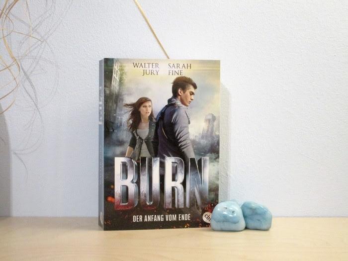 BURN - Der Anfang vom Ende von Walter Jury und Sarah Fine
