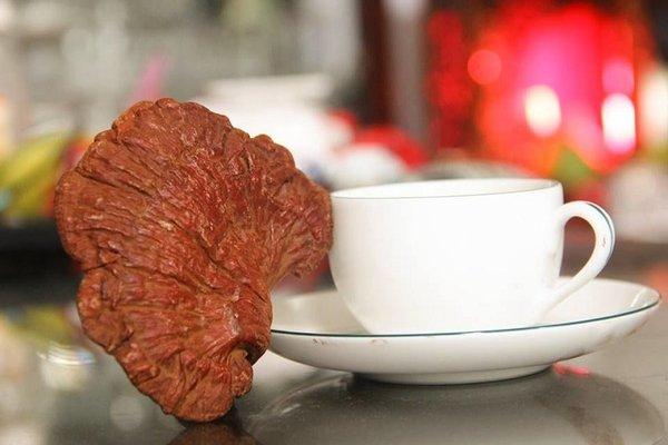 cách chế biến nấm linh chi đỏ