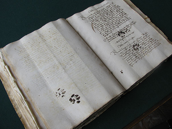 #4 Cats are always evil. Even in the 15th century.