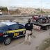 PRF recolhe cerca de 200 veículos irregulares durante Operação Maio Amarelo no Agreste de Pernambuco